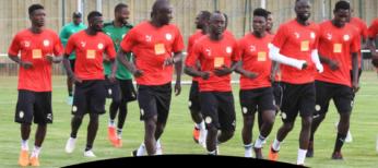 PRÉSENTATION : Qui sont les 5 nouveaux Lions de Cissé ?